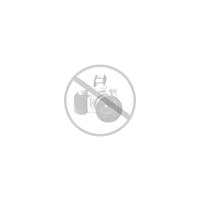Corona gama morados
