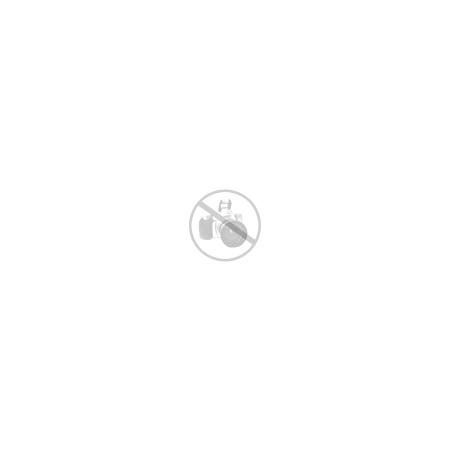 DreamCar Odrážadlo McQueen - modré